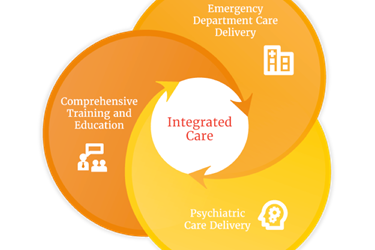graphic showing domains of behavioral healthcare in the emergency room